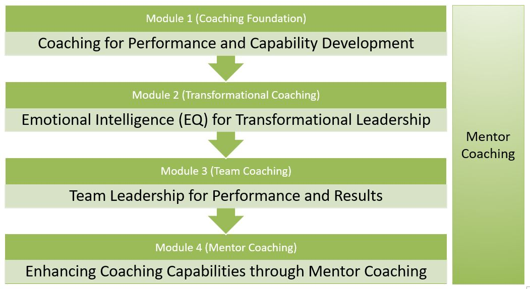 Certified Performance Leadership Coach Program
